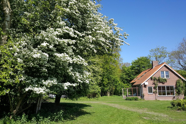 Breezand voorjaar